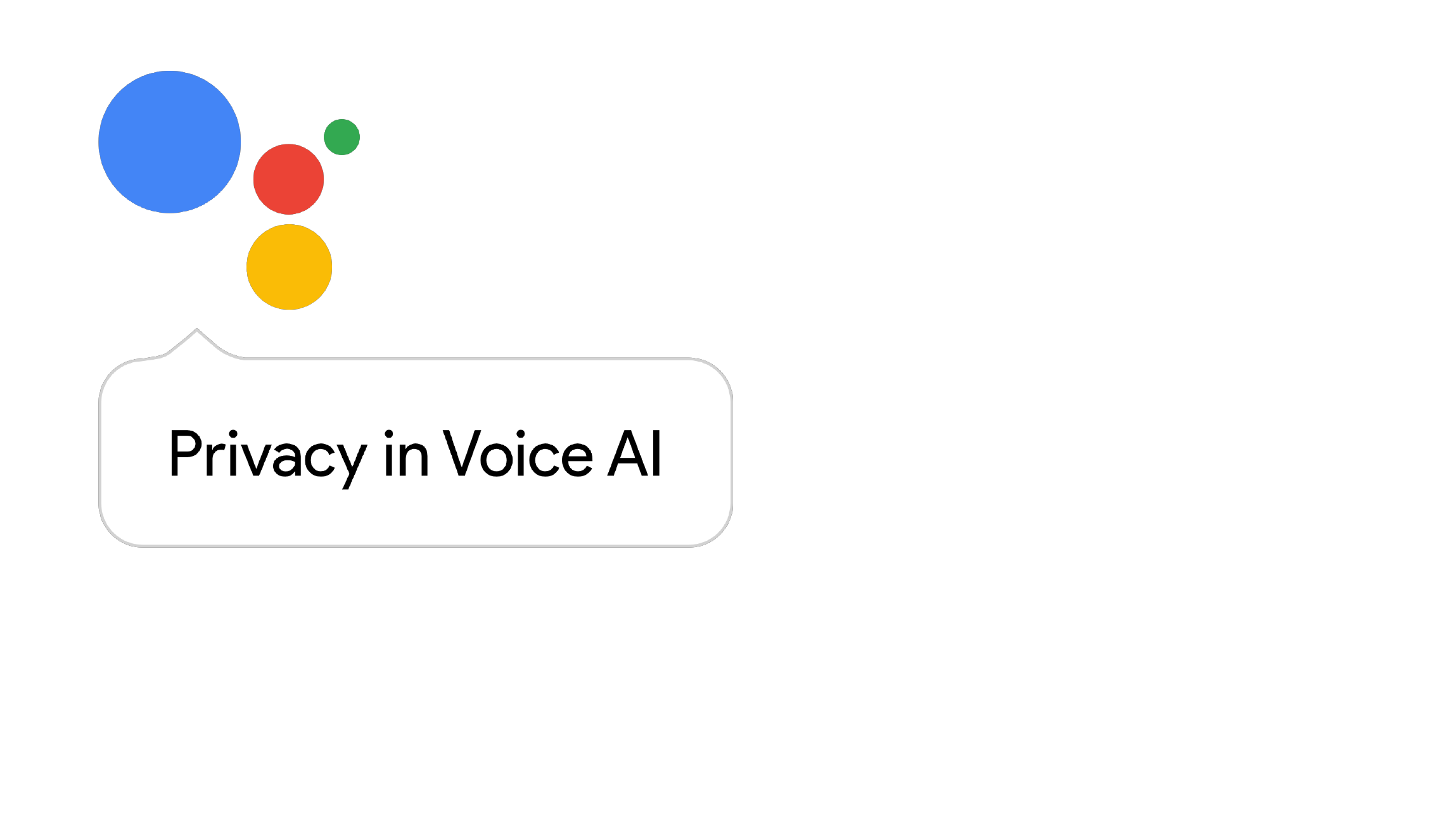Privacy In Voice AI